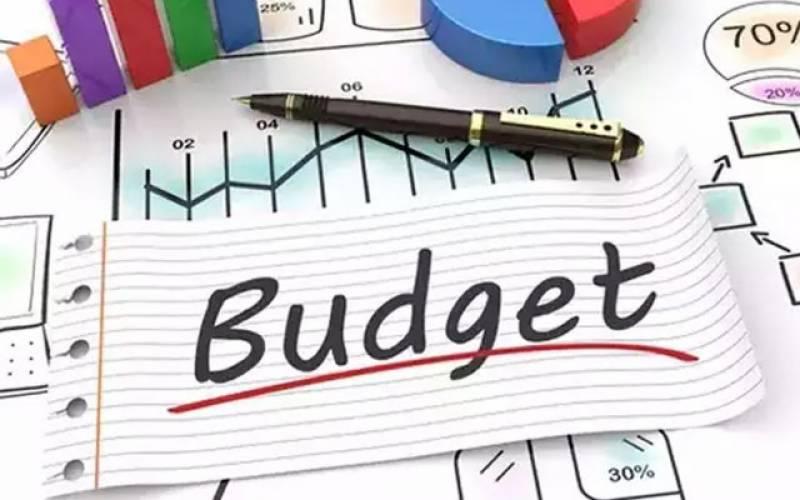 حکومت آئندہ بجٹ میں ٹیکسز کا بوجھ کم کرے ، تجویز