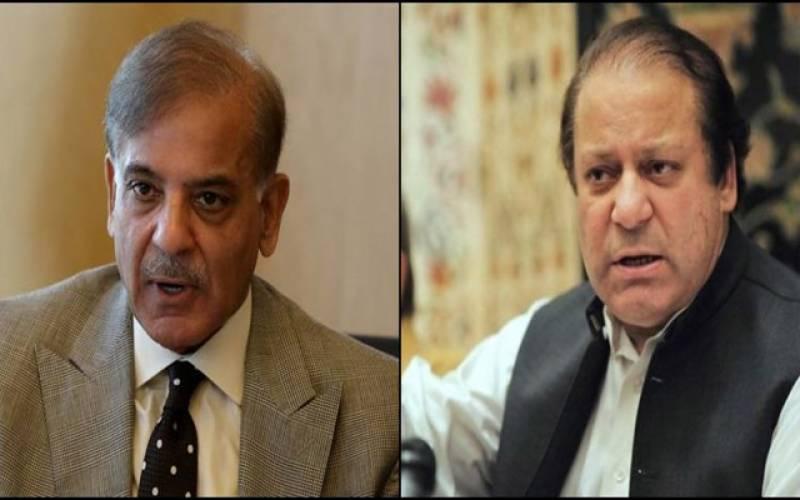 شہباز ، نواز رابطہ ۔۔آزاد کشمیر الیکشن پر مشاورت