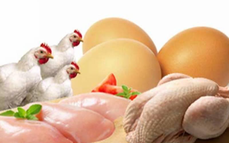 برائلر مرغی کے گوشت کےریٹ میں ریکارڈ کمی