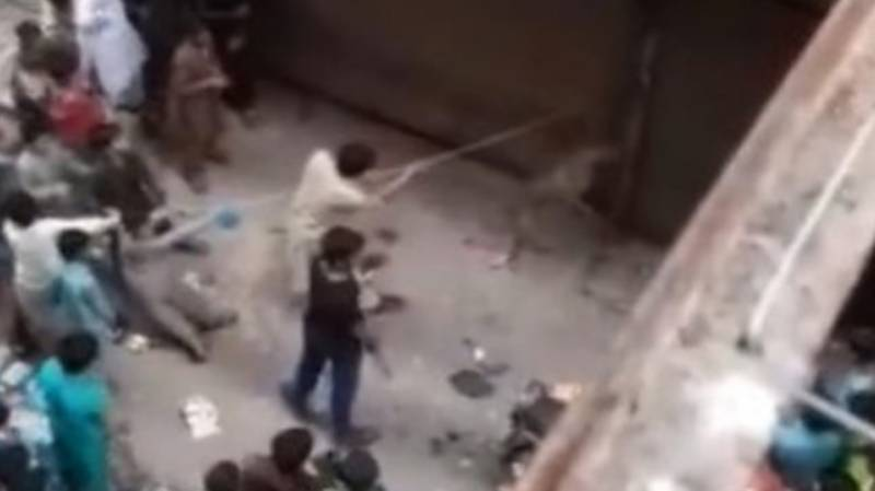 کراچی،کتے پر بدترین تشدد کرکے مارنے کی ویڈیو وائرل،مرکزی ملزم گرفتار