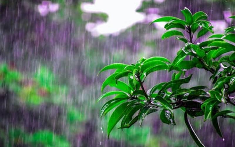 بارشیں شروع۔۔۔سلسلہ کب تک جاری رہے گا۔۔جانیے