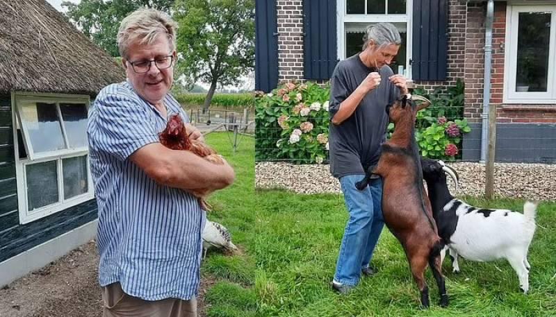 بکرے اور مرغے کی بہادری۔۔باز کے پنجوں میں پھنسی مرغی کی جان بچا لی