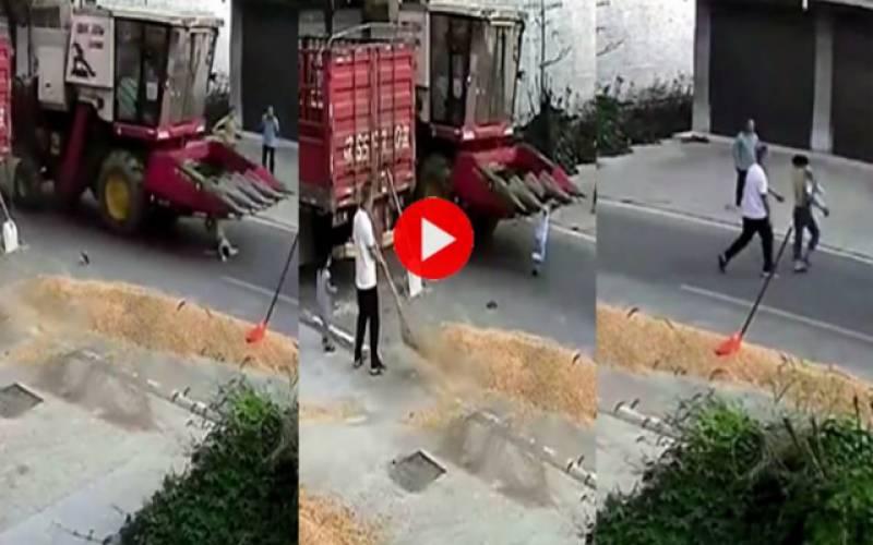 ویڈیو وائرل
